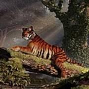 Tiger On A Log Art Print by Daniel Eskridge