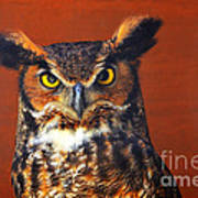 Tiger Owl Art Print