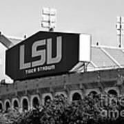 Tiger Stadium Art Print by Scott Pellegrin