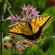 Tiger Swallowtail Digital Art Art Print
