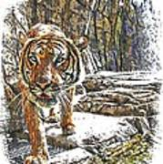Tiger View Art Print