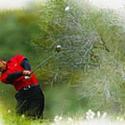 Tiger Woods - The Chevron World Challenge Art Print