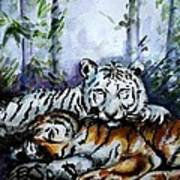 Tigers-mother And Child Art Print