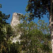 Tikal Pyramid 4a Art Print