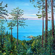 Timber Cove On A Still Summer Day Art Print