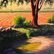 Time For Planting, Peru Impression Art Print