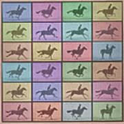 Time Lapse Motion Study Horse Color Art Print