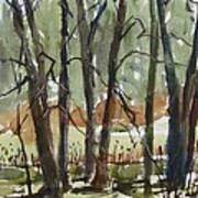 Tims Pond Art Print