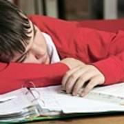 Tired Boy Asleep On His Homework Art Print