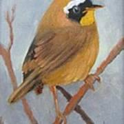 Tit Bird Art Print