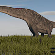 Titanosaurus Standing In Swamp Art Print