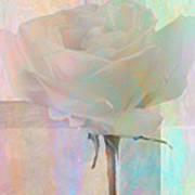 To The Rose Art Print