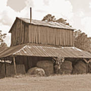 Tobacco Barn in Sepia Art Print