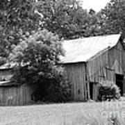 barn in Kentucky no 10 Art Print