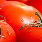 Tomatoes. Art Print
