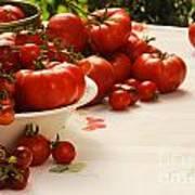 Tomatoes Tomatoes Art Print