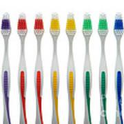 Toothbrushes Art Print