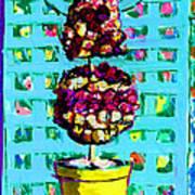 Topiary Of Dried Roses Art Print