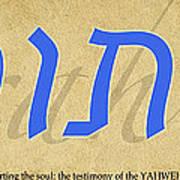 Torah Art Print