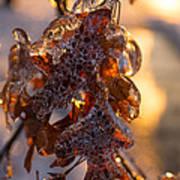 Toronto Ice Storm 2013 - Oak Leaves Jewelry Art Print