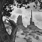 Totem Pole - Arizona Art Print