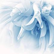 Touch Of Blue Dahlia Flower Art Print