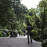 Tourists Inside A Downward Sloping Section In The Orchid Garden Art Print