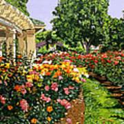Tournament Of Roses II Art Print