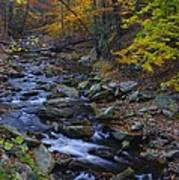 Tracking Color - Big Hunting Creek Catoctin Mountain Park Maryland Autumn Afternoon Art Print