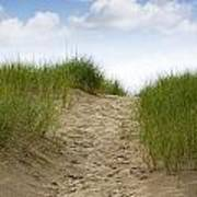 Trail Over The Dune To The Summer Beach Art Print
