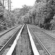 Train Tracks Running Through The Forest Art Print