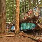 Train Wreck Canvas Among The Trees Art Print