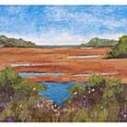 Tranquil Marsh Art Print