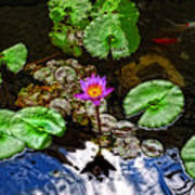 Tranquility - Lotus Flower Koi Pond By Sharon Cummings Art Print