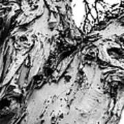 Tree Face No Color Art Print by Lisa Cortez