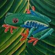 Tree Frog Koi Art Print
