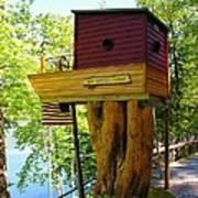 Tree House Boat Art Print