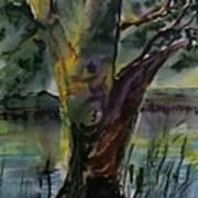 Tree In A Dream Art Print