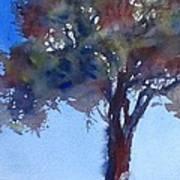 Tree Of Color Art Print