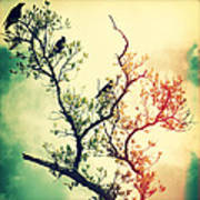Tree Of Crows II Lights Art Print