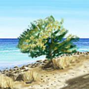 Tree On The Beach Art Print by Veronica Minozzi