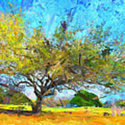 Tree Series 64 Art Print