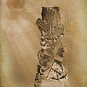 Tree Stump The Forgotten Series 05 Art Print