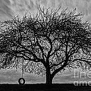 Tree Swing Art Print