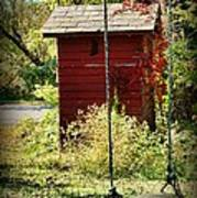 Tree Swing By The Outhouse Art Print