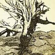 Tree Trunk By The Sea Art Print