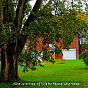 Tree With Scripture Art Print