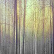 Trees Abstraction Art Print