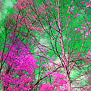 Trees Alive In Pink Art Print
