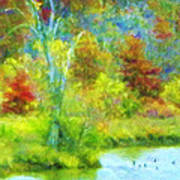 Trees In Spring On A Lake Art Print